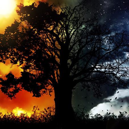 Prophetic Word: Night & Day