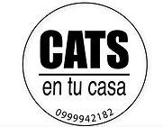 LOGO CATS.JPG