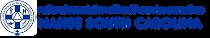 NAHSE logo.png