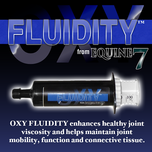 Oxy Fluidity / EQUINE 7