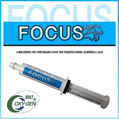 FOCUS Sherry Cervi's Focus built by Oxy-Gen