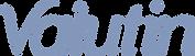 logotipo-Valutin-1024x295.png