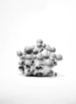 Kerstin Lakeberg, Stilllife, Stillleben, Stilllifephotographer, Fotograf, Berlin, Werbefotograf, Hamburg, Still-Fotograf, Werbung, ästhetisch, Serie, Food, Pilze, fine-ar