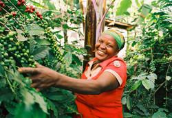 fairtrade-farmer