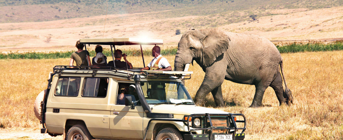 Tanzania-safaris-ngorongoro-safari-1400x575