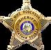 Badge BLNK.png