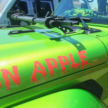 Experience Our Phat Turtle Jeep Rallies