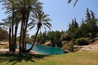 National Park Gan HaShlosha, Israel..jpg