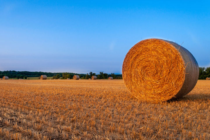Hay-bales-outside-Baraboo-WI-by-Erin-Sot