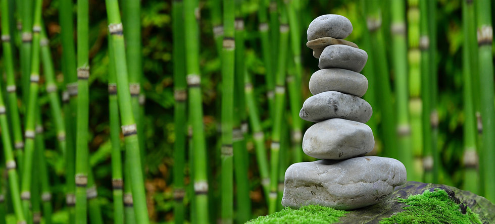 Stacked rocks with bamboo forrest background