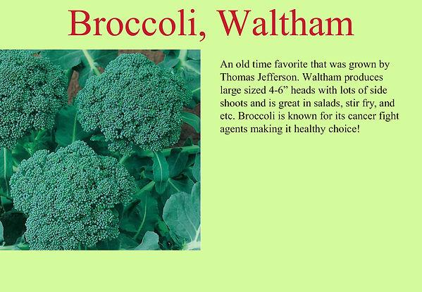 Broccoli Waltham.jpg
