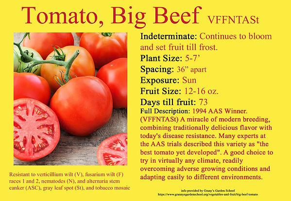 Tomato,Big Beef.jpg