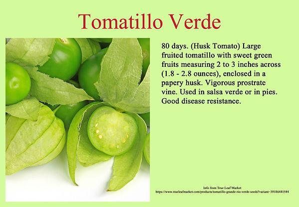 Tomatillo Verde.jpg