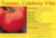 Tomato, Celebrity Label.jpg