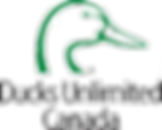 Ducks Unlimited Logo.png