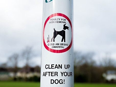 Dog fouling...Who gives a $*@#