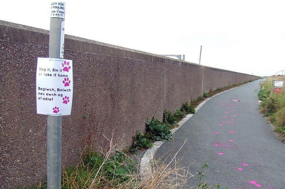 """Footpath with pawprints painted in pink leading to a dog poo bin and a sign that says """"Bag it Bin it or take it home"""""""