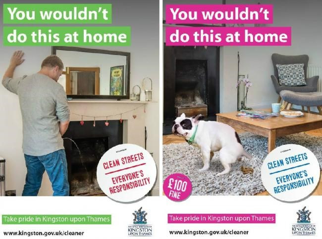 Two Kingston Borough council anti dog fouling posters one of a man urinating in his fireplace and the other of a dog pooing on the living room rug