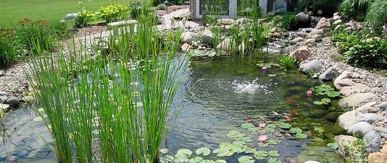 small backyard pond with aeration system