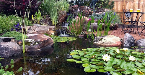 backyard pond and patio private space