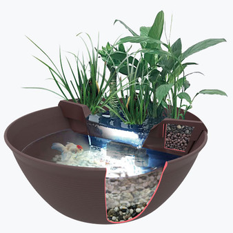 4 Benefits to Indoor Water Gardens