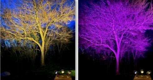 colour adjustable lights for landscape bluetooth