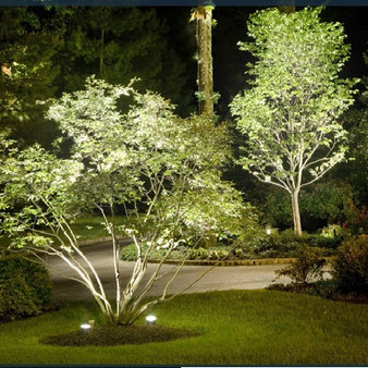 CAST Landscape Lighting System Maintenance | What Homeowners Need to Know