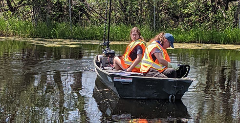 lagoon assessment and treatment