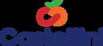 Castellini_Logo_V_Color_Dark-600x272.png