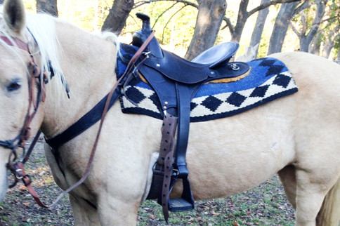 Saddle by McKenna Saddlery