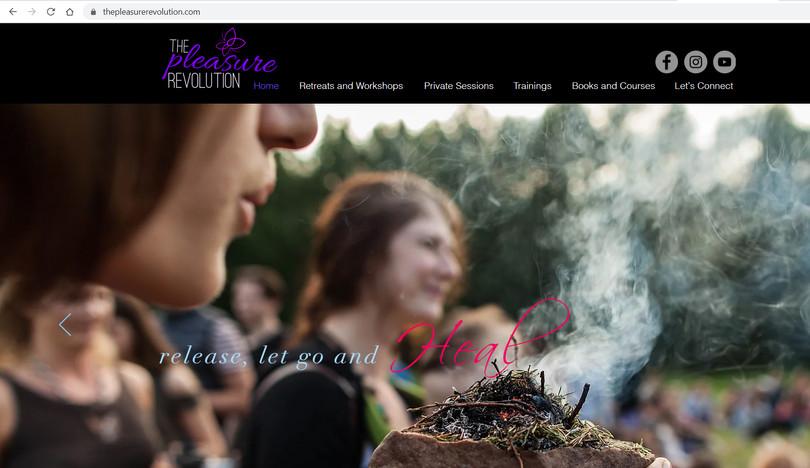Website Design- Pleasure Revolution.jpg
