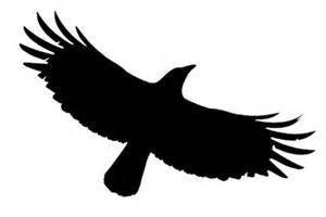 Crow Business blog COMING SOON!