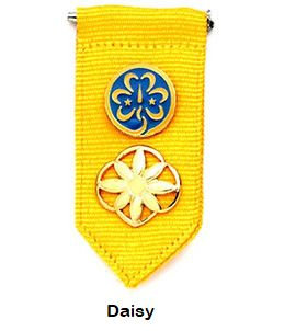 Girl Scout Insignia Tab (no pins included)