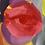 """Thumbnail: """"lazy eye"""""""