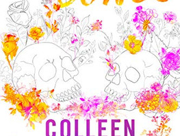 Review: Heart Bones by Colleen Hoover