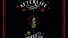 Review: The Afterlife of Holly Chase by Cynthia Hand