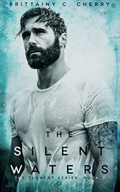 Review: The Silent Waters by Brittainy C Cherry
