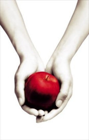 Review: Twilight by Stephanie Meyer