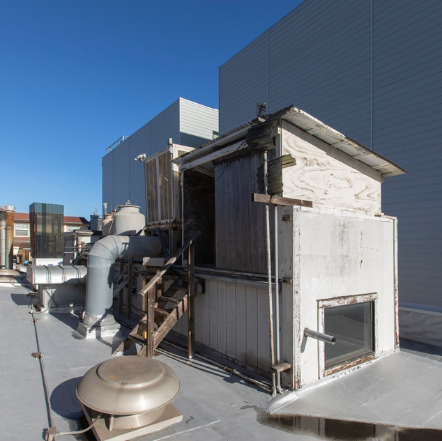 2352Lombard Roof6.jpg