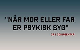 DR program.png