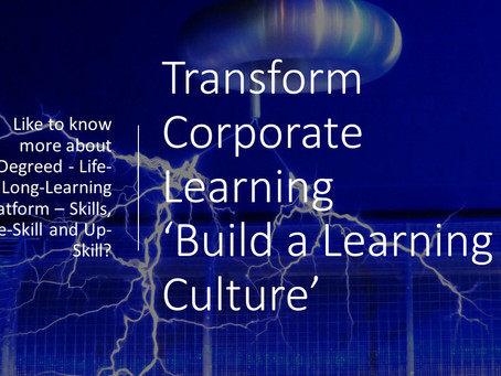 So you want to build a learning culture...