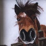 Needle felt pet portrait, pony
