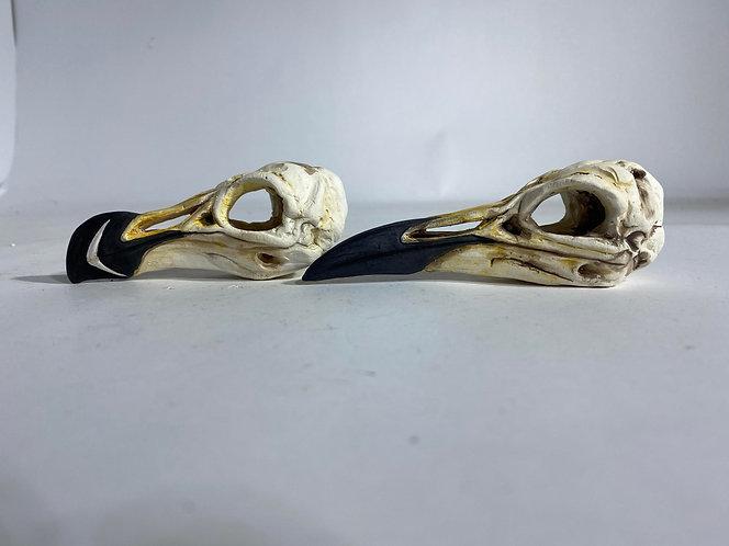 ceramic bird skulls custom order