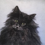 Needle Felt pet portrait, wool painting