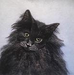 Needle Felt pet portrait, wool painting