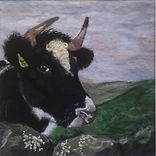 Needle felt pet portrait, wool painting, Shetland Cow
