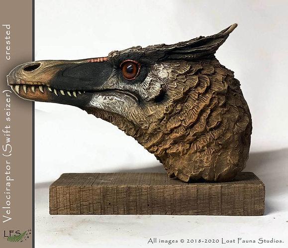 Velociraptor (crested)