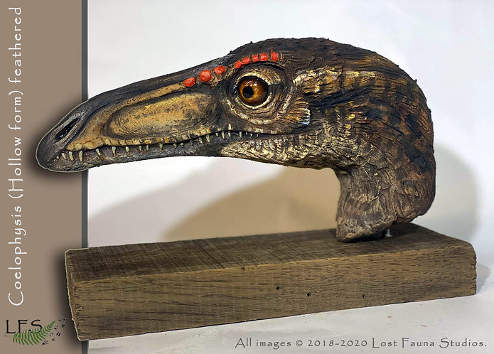 Coelophysis feathered