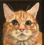 Needle felt pet portrait, cat