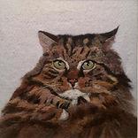 Needle felt pet portrait, wool painting, cat